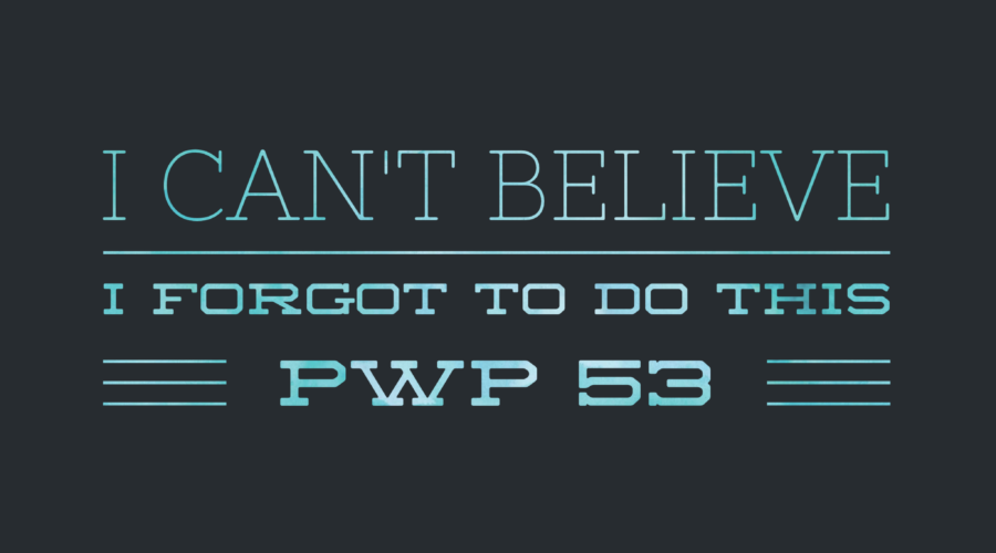 PWP 53 | You Want Me to Do What Now? (aka Have Some Friggin Fun!)